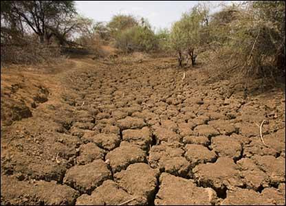 http://www.thewashingtonnote.com/twn_up_fls/drought%20twn.jpg